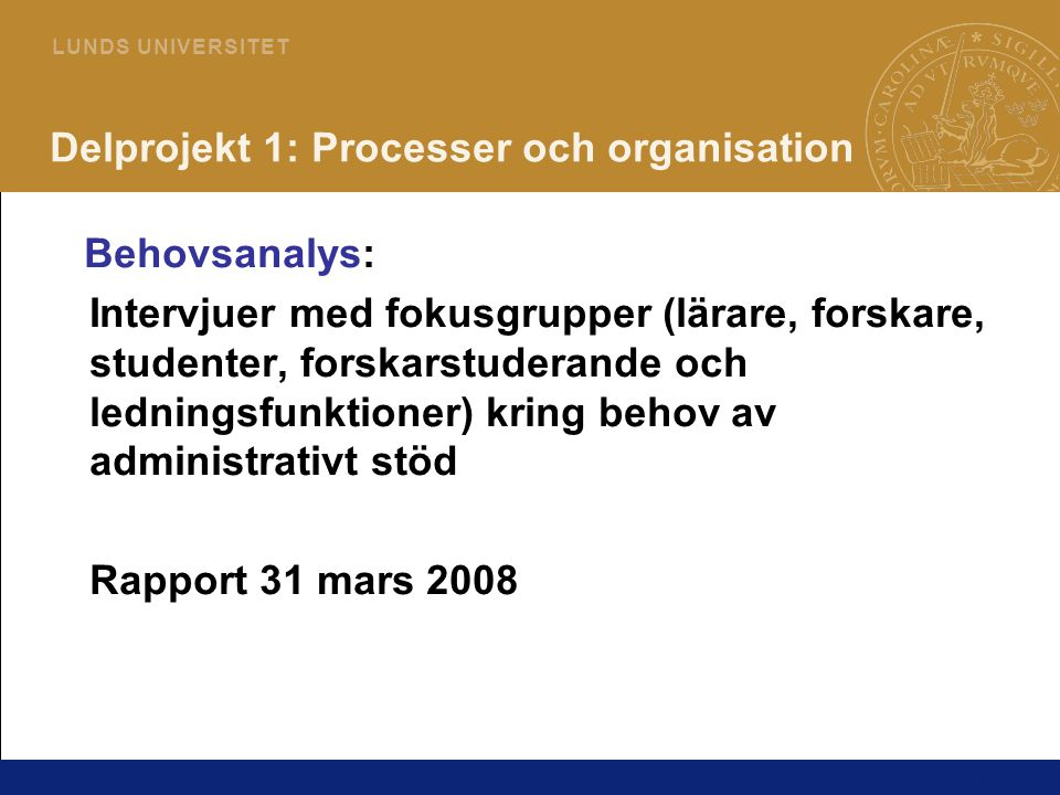 Delprojekt 1: Processer och organisation