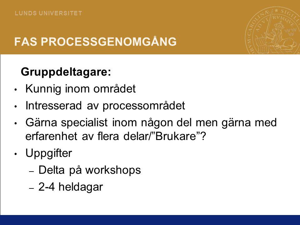 FAS PROCESSGENOMGÅNG Gruppdeltagare: Kunnig inom området. Intresserad av processområdet.