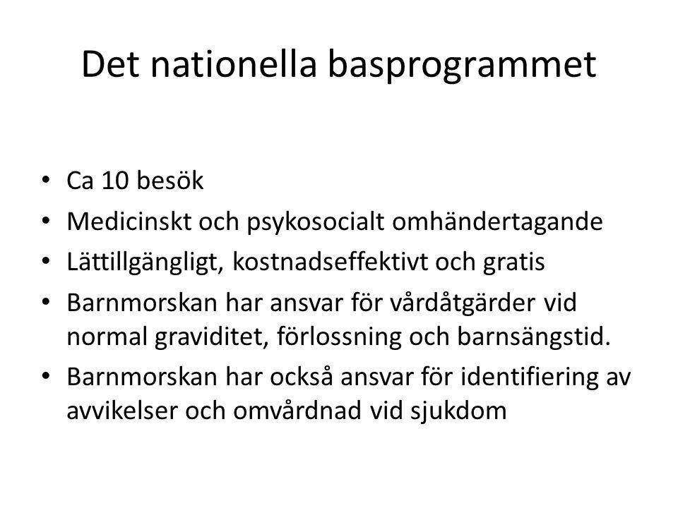 Det nationella basprogrammet