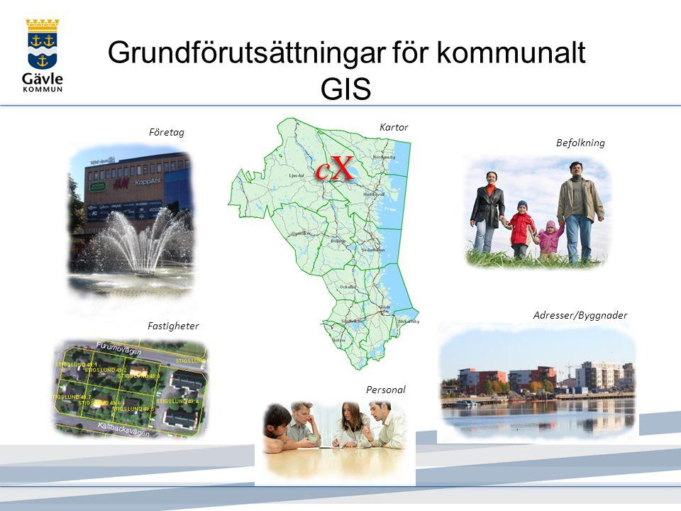 Grundförutsättningar för kommunalt GIS