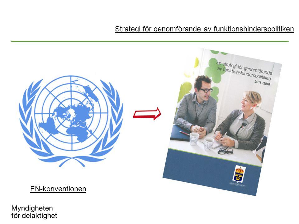 Strategi för genomförande av funktionshinderspolitiken