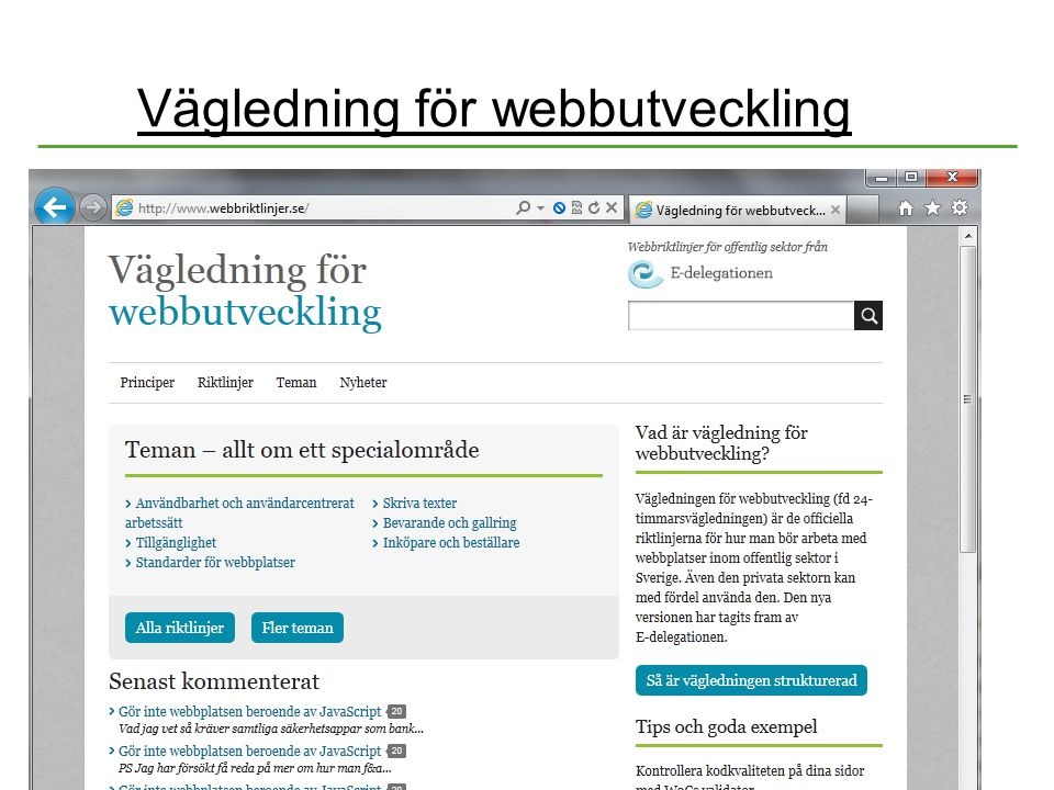 Vägledning för webbutveckling