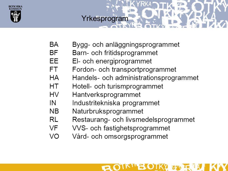 Yrkesprogram