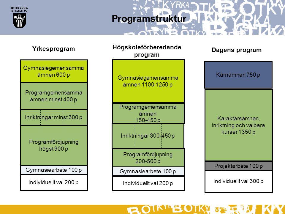 Programstruktur Högskoleförberedande program Yrkesprogram