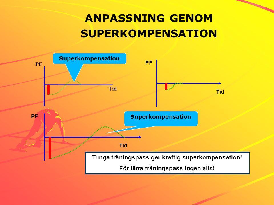 ANPASSNING GENOM SUPERKOMPENSATION