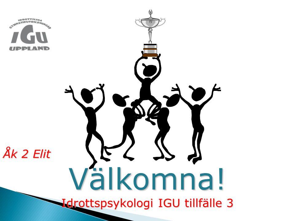 Idrottspsykologi IGU tillfälle 3