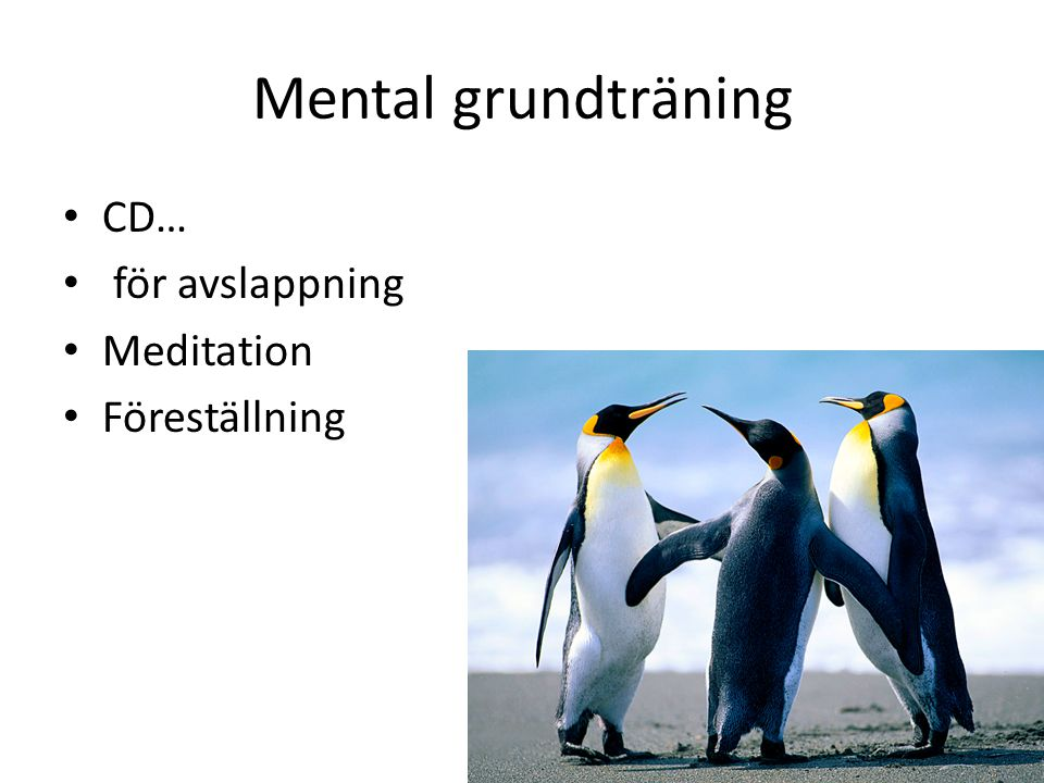 Mental grundträning CD… för avslappning Meditation Föreställning