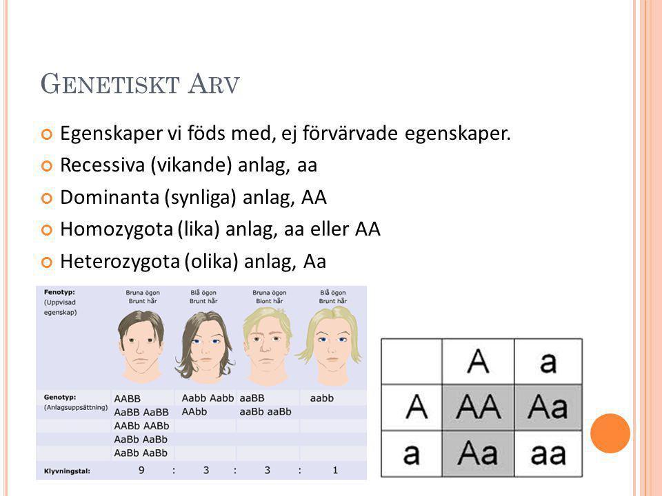 Genetiskt Arv Egenskaper vi föds med, ej förvärvade egenskaper.