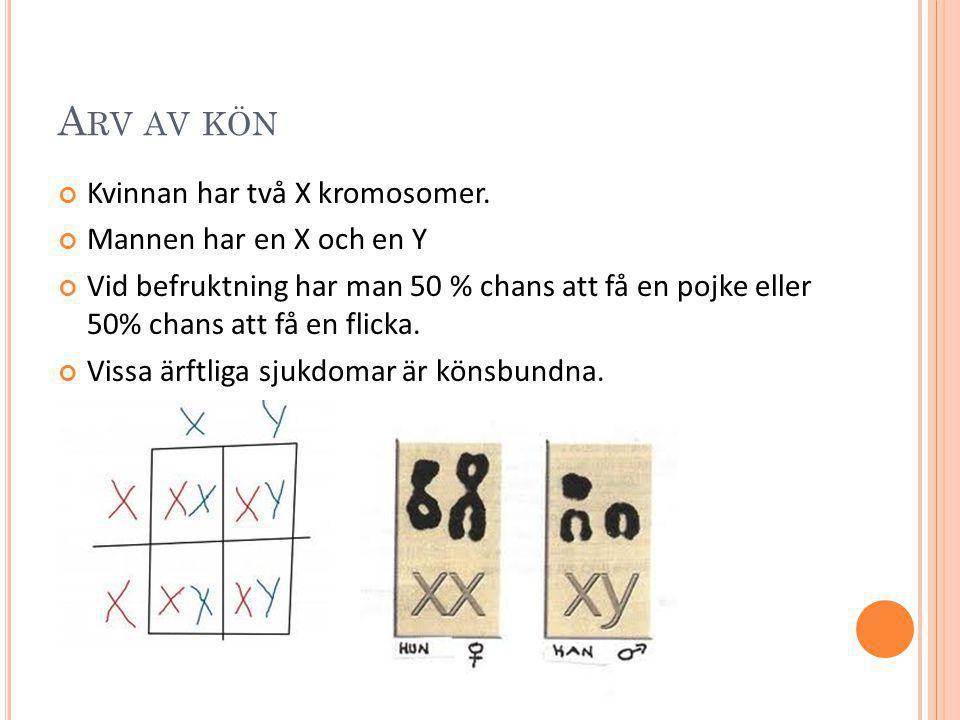Arv av kön Kvinnan har två X kromosomer. Mannen har en X och en Y