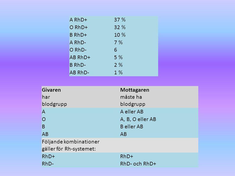 A RhD+ 37 % O RhD+ 32 % B RhD+ 10 % A RhD- 7 % O RhD- 6. AB RhD+ 5 % B RhD- 2 %