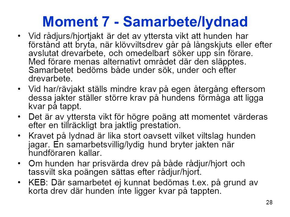 Moment 7 - Samarbete/lydnad