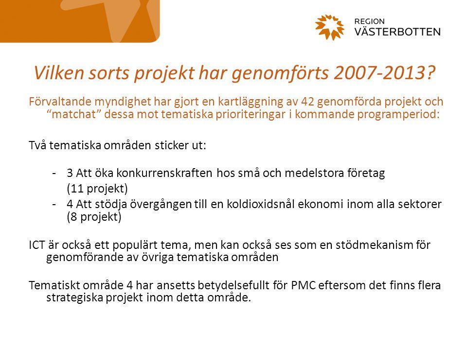 Vilken sorts projekt har genomförts 2007-2013