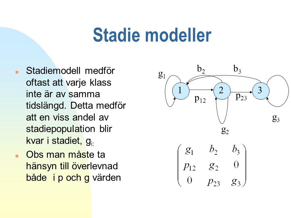 Stadie modeller b2. b3.