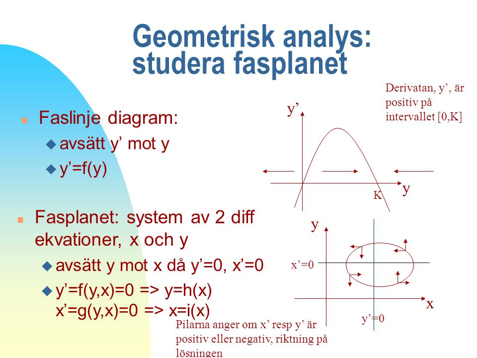 Geometrisk analys: studera fasplanet