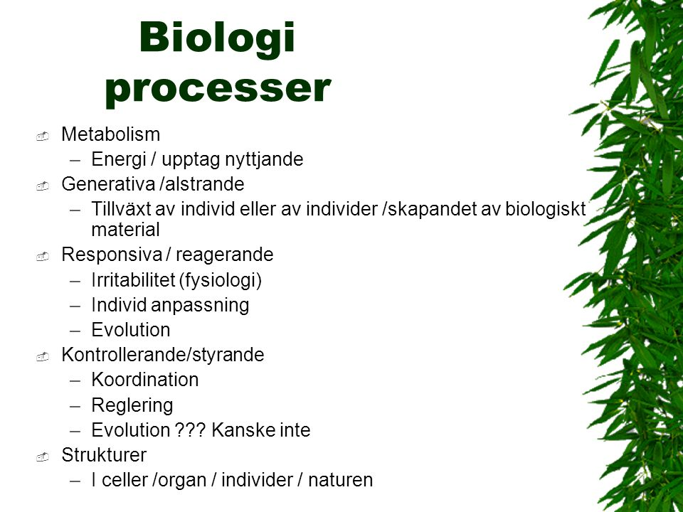 Biologi processer Metabolism Energi / upptag nyttjande