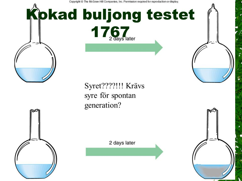 Kokad buljong testet 1767 Syret !!! Krävs syre för spontan generation