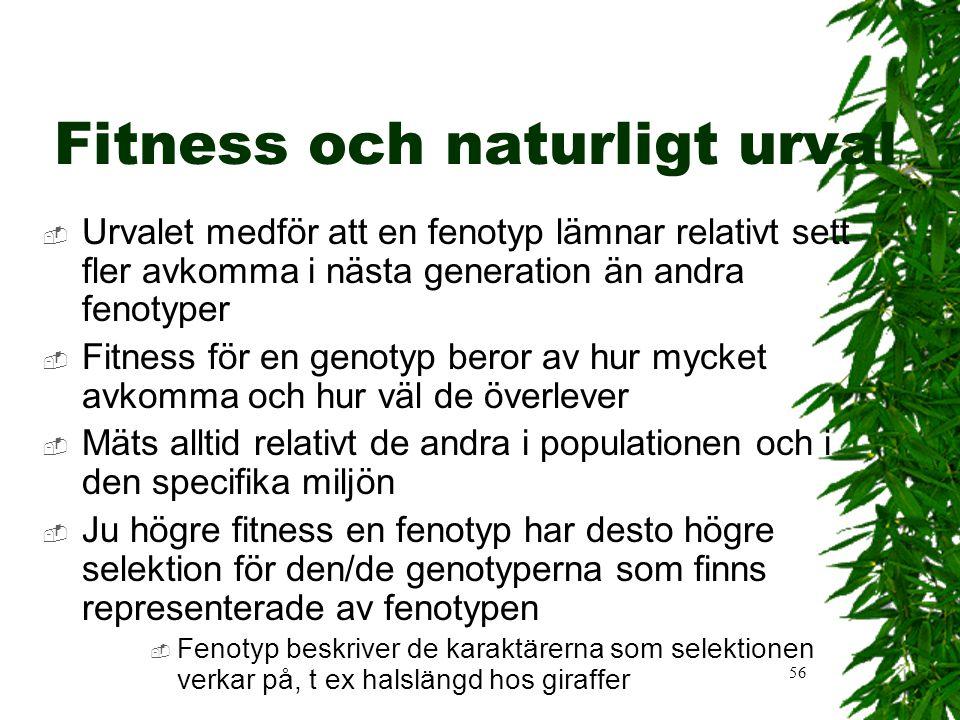 Fitness och naturligt urval
