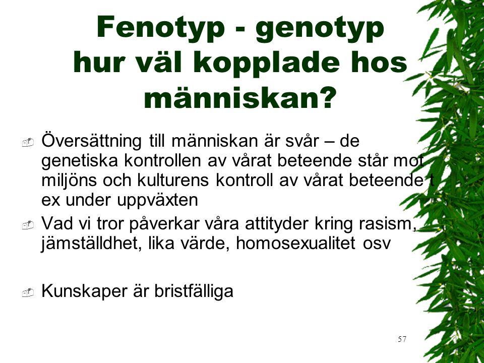 Fenotyp - genotyp hur väl kopplade hos människan