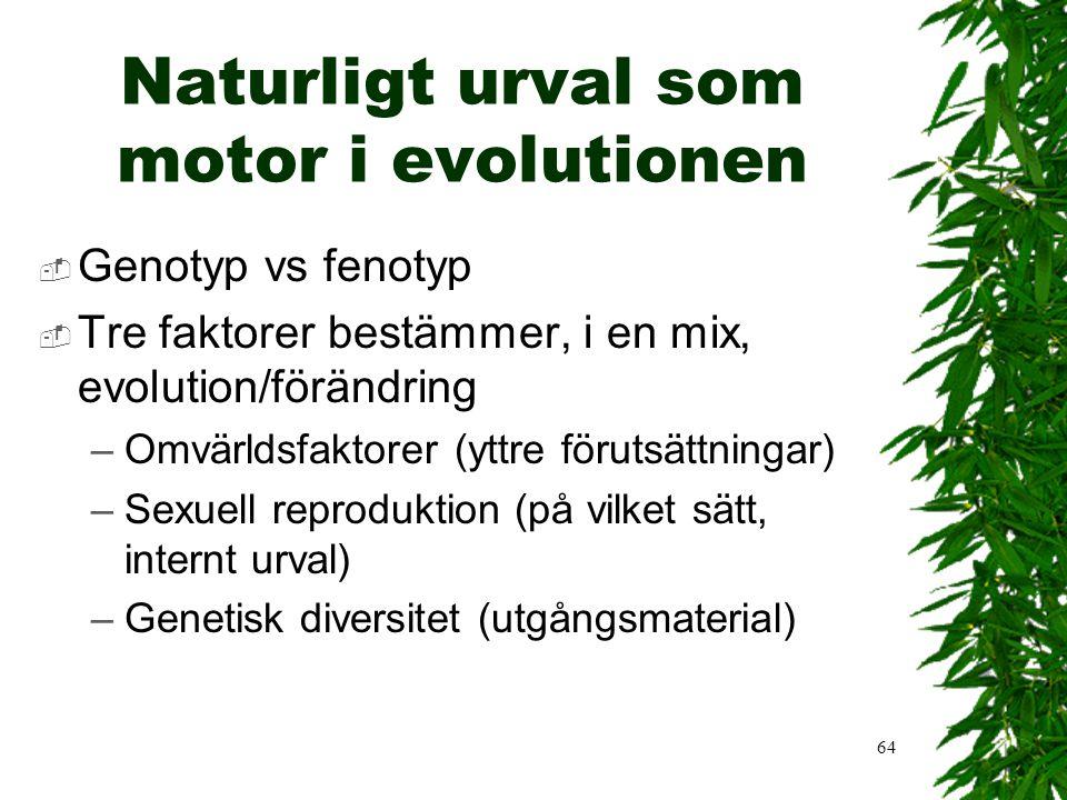 Naturligt urval som motor i evolutionen