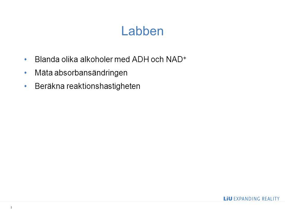 Labben Blanda olika alkoholer med ADH och NAD+ Mäta absorbansändringen
