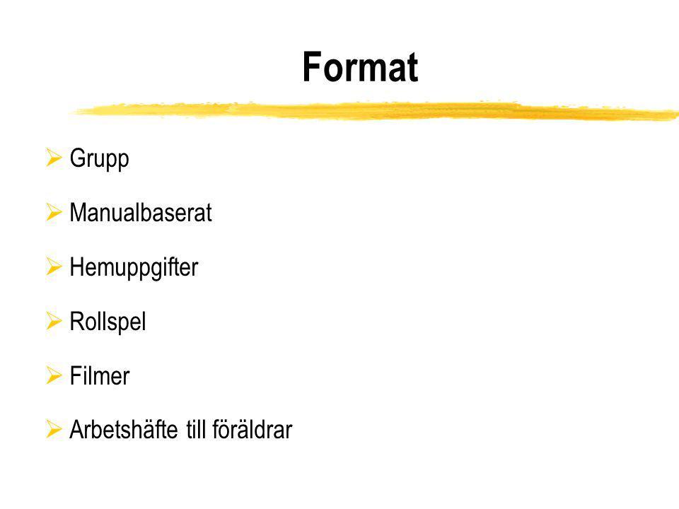 Format Grupp Manualbaserat Hemuppgifter Rollspel Filmer