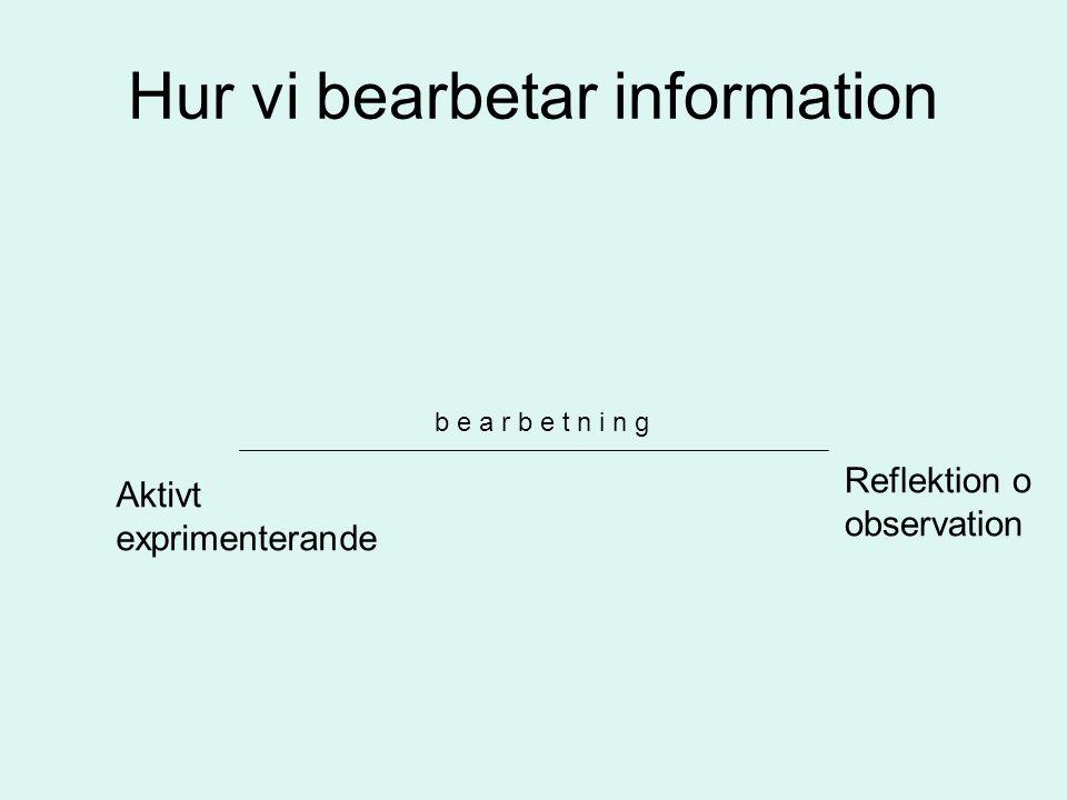 Hur vi bearbetar information