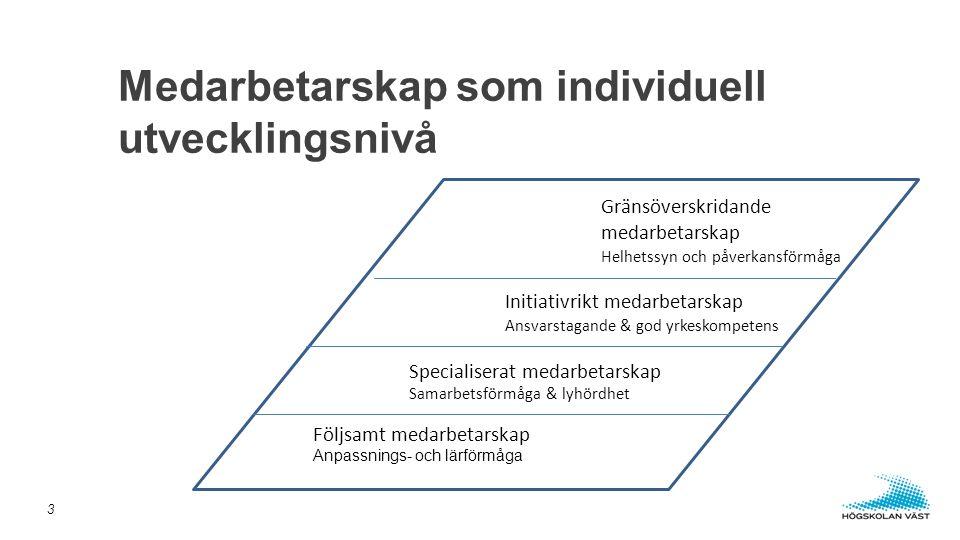 Medarbetarskap som individuell utvecklingsnivå