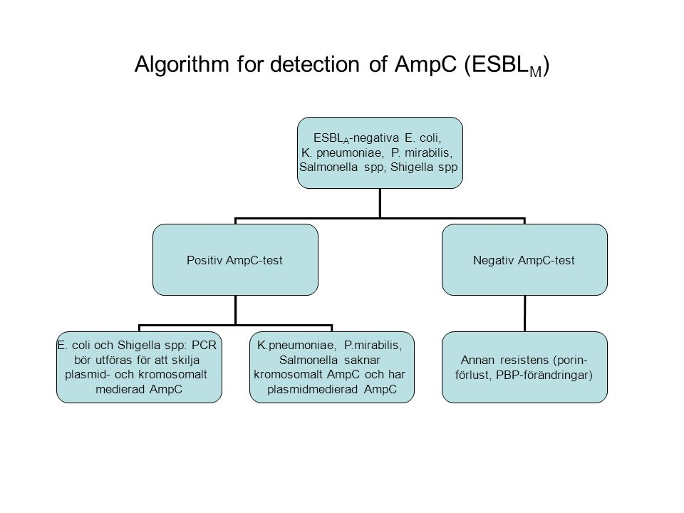 Algorithm for detection of AmpC (ESBLM)