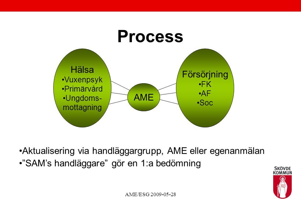 Process Hälsa Försörjning AME