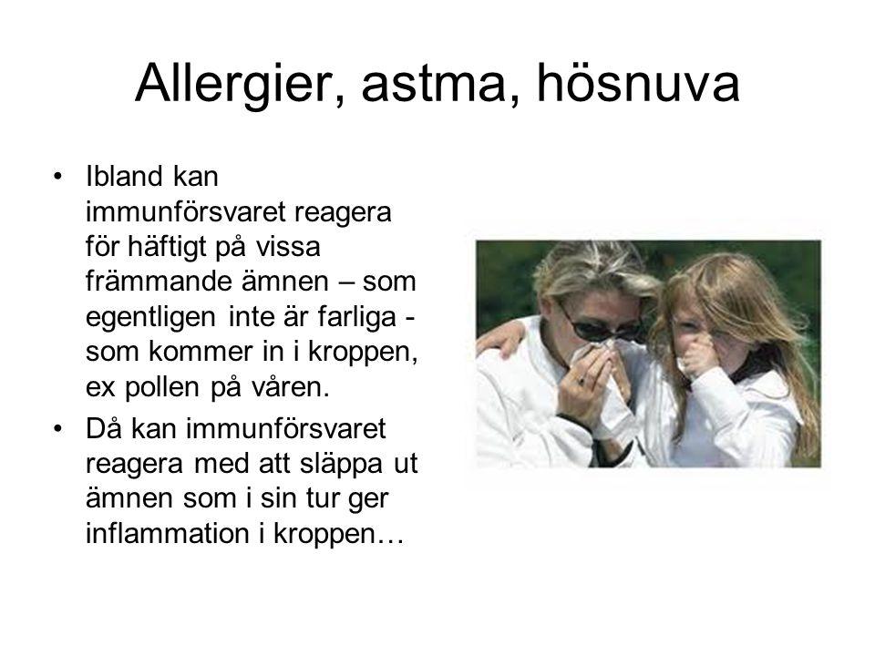 Allergier, astma, hösnuva