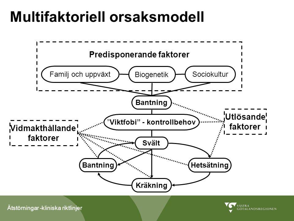 Multifaktoriell orsaksmodell