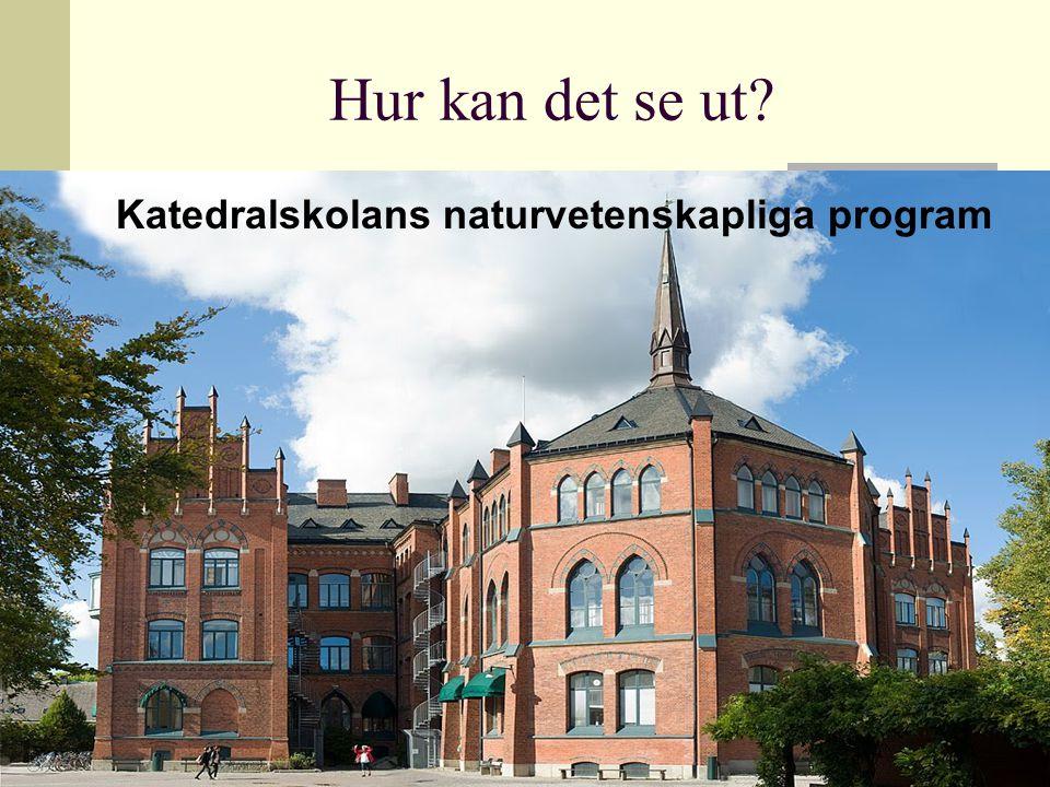 Hur kan det se ut Katedralskolans naturvetenskapliga program