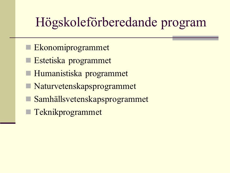Högskoleförberedande program