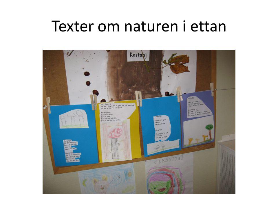 Texter om naturen i ettan