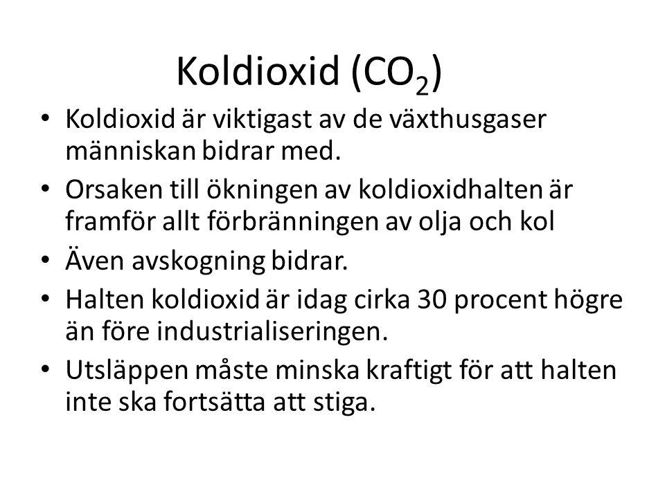 Koldioxid (CO2) Koldioxid är viktigast av de växthusgaser människan bidrar med.