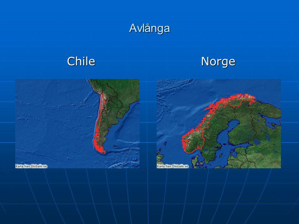 Avlånga Chile Norge