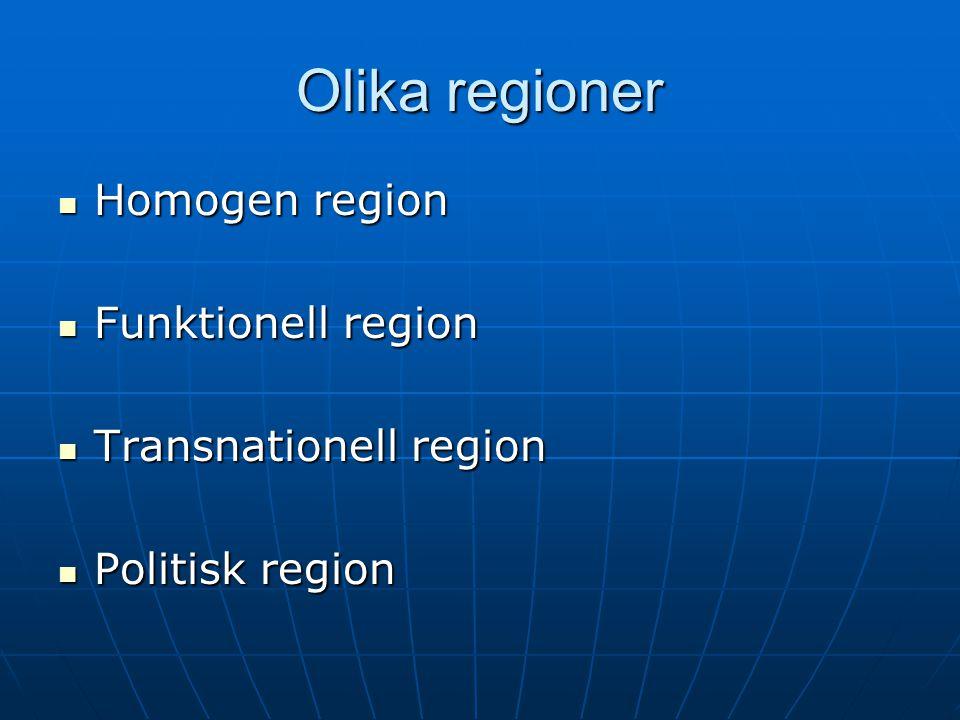 Olika regioner Homogen region Funktionell region Transnationell region