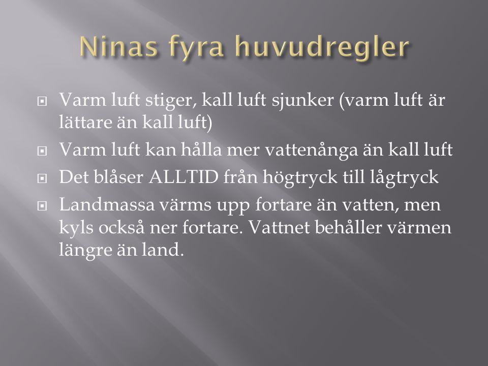 Ninas fyra huvudregler