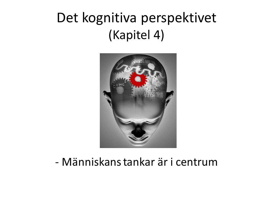 Det kognitiva perspektivet (Kapitel 4)