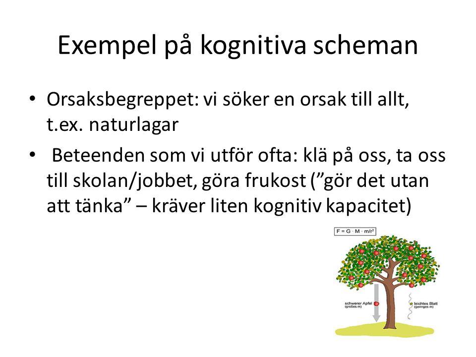 Exempel på kognitiva scheman