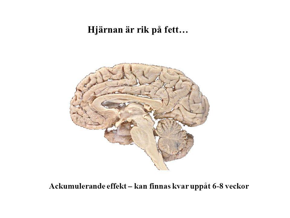 Hjärnan är rik på fett… Ackumulerande effekt – kan finnas kvar uppåt 6-8 veckor