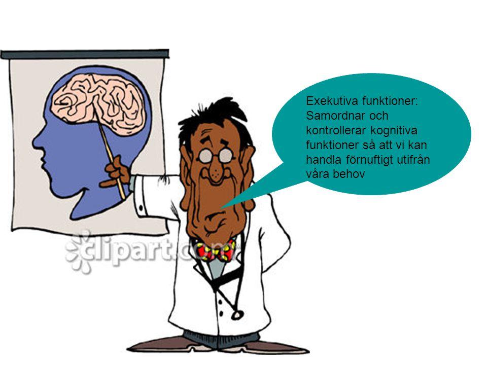Exekutiva funktioner: Samordnar och kontrollerar kognitiva funktioner så att vi kan