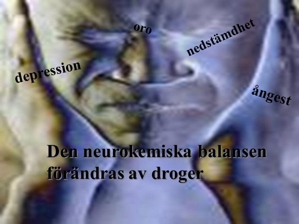 Den neurokemiska balansen förändras av droger