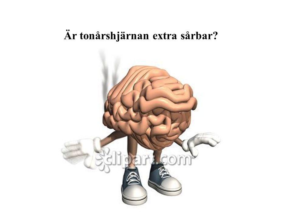 Är tonårshjärnan extra sårbar