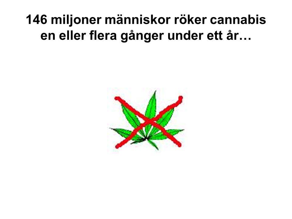 146 miljoner människor röker cannabis en eller flera gånger under ett år…