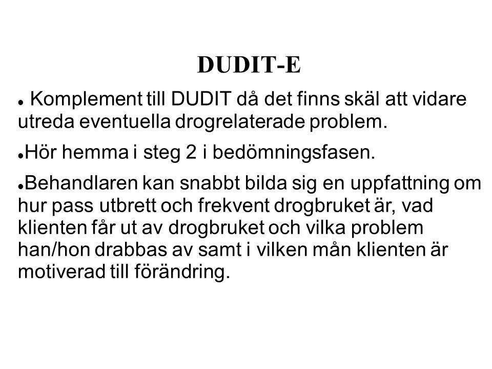 DUDIT-E Komplement till DUDIT då det finns skäl att vidare utreda eventuella drogrelaterade problem.