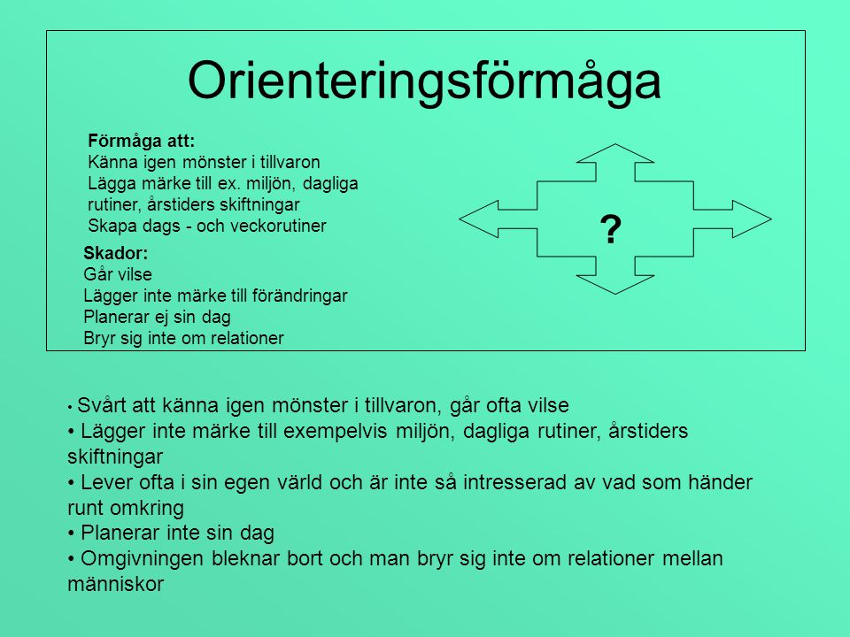 Orienteringsförmåga Förmåga att: Känna igen mönster i tillvaron. Lägga märke till ex. miljön, dagliga rutiner, årstiders skiftningar.
