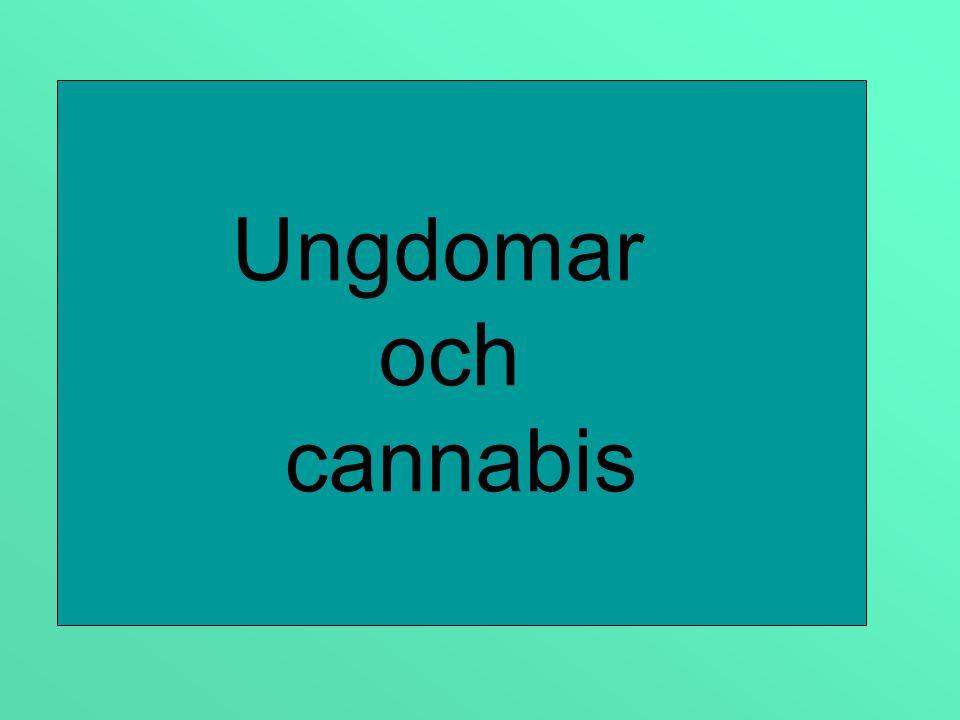 Ungdomar och cannabis
