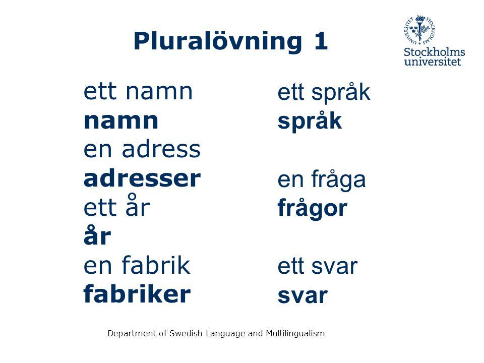 Pluralövning 1 ett språk ett namn språk namn en adress en fråga