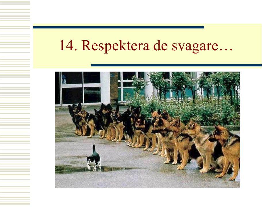 14. Respektera de svagare…
